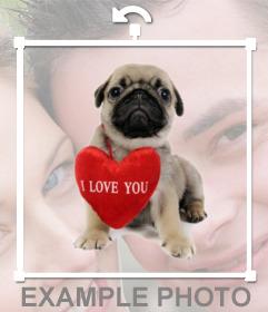 Effet photo dun chiot avec un coeur pour ajouter vos photos pour