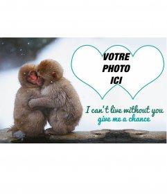 Collage avec deux petits singes