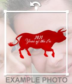 Le bœuf de la nouvelle année