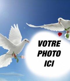Effet de Photo de paix avec deux colombes blanches volent