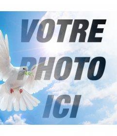 Effet photo avec la colombe de la paix pour votre photo