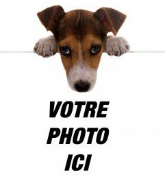 Effet en ligne dun chiot mignon tenant votre photo