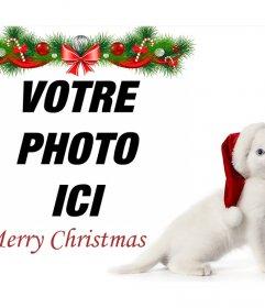 Noël effet photo avec un chaton pour télécharger votre photo