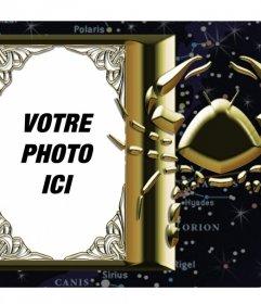 Cadre qui peut être lié avec le signe du zodiaque Scorpion votre photo