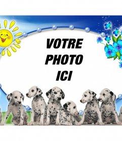 Photomontage avec chiots dalmatiens et fond de photo