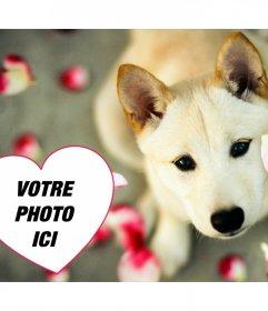 Effet photo mignon pour ajouter votre photo dans un coeur avec un chiot de photomontages en ligne que vous pouvez utiliser comme photo de couverture où vous pouvez ajouter votre photo à lintérieur dun coeur avec un chien mignon et pétales de rose. Un effet libre très mignon pour les amateurs de chiens