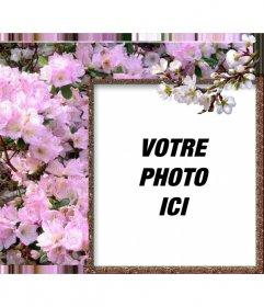 Cadre photo pour les photos en ligne autour de votre photo de fleurs blanches