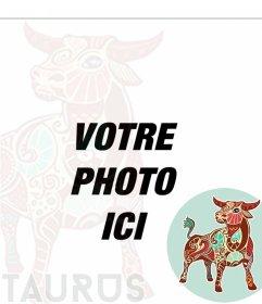 Taureau profil de composition zodiaque pour vos photos