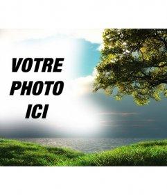Photomontage avec un paysage avec la mer en arrière-plan et un arbre dans le champ vert où vous pouvez télécharger une image qui apparaîtra intégré avec le ciel bleu