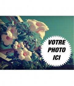 Collage de photos avec des fleurs de printemps perce-neige dans le domaine