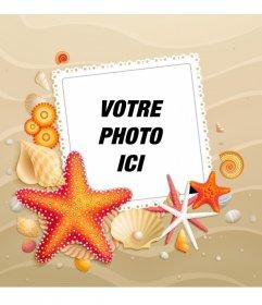 Personnalisez votre avatar avec un fond de plage avec des étoiles de mer lété pour facebook et twitter