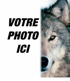 Photomontage de mettre un visage de loup à côté de vous, remplir votre moitié