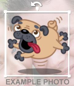Sticker pour mettre vos photos en un chien enragé