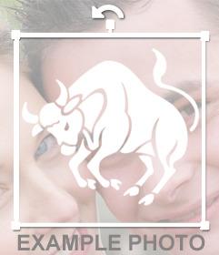 Autocollant pour vos photos du zodiaque signe du Taureau
