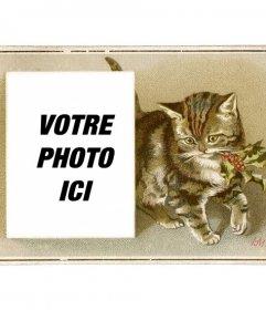 Carte de Noël avec le millésime chat brun dessiné avec un houx dans la bouche et une boîte dans laquelle placer une photo