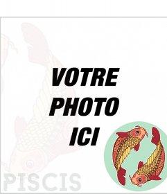 Zodiac frame Poissons avec deux carpes colorées