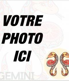Cadre photo Gemini signe à insérer dans votre photo de profil