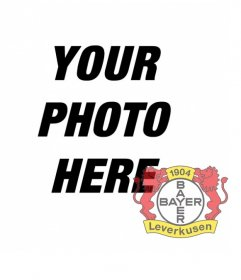 Photo effect for photos to put the shield of Bayer Leverkusen in your photo