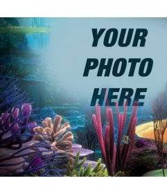 Your photo on the ocean with corals, just upload it to this photo effect online