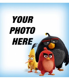 The characters of Angry Birds accompanying you in your photos with this effect