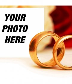 Romantic effect of engagement with two gold rings to add a photo