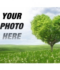 Photomontage to put a picture next to your a heart-shaped tree
