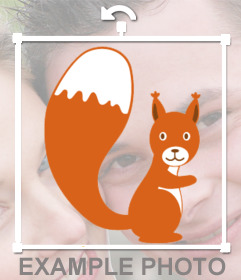 Sticker with a picture of a squirrel