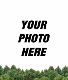 Customize your Facebook and Twitter profile picture and add a green forest in the bottom uploading your image online