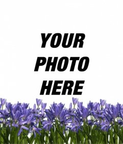 Create an avatar for Twitter or Facebook with a lilac flowers on your profile picture online and free