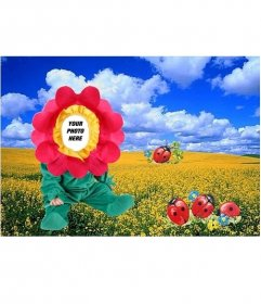 Costume of flower in the meadow, to put the face of your baby