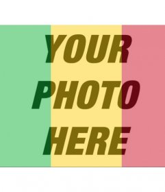 Flag of Mali to put in your profile photos