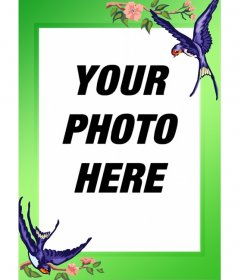Photo frame birds and green border to do with your images