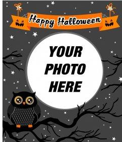 Halloween photo frame with an owl