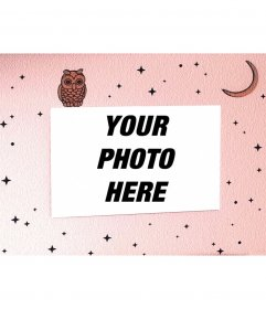 Owl picture frame with stars and moon background
