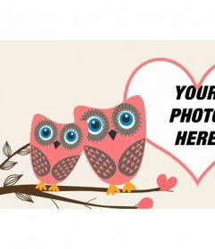 Love Facebook cover photo to customize with two owls