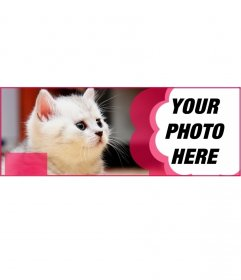 Custom facebook cover with a white cat and a pink flower to put your picture and the text you want