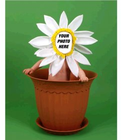Photomontage for children to disguise of a flower in a pot