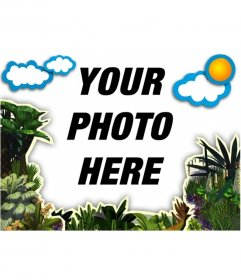Frame photos of vegetation and clouds to decorate your photos
