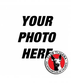 Photo montage with Tijuana Mexico team badge and your photo