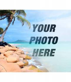 Collage with a heavenly beach with blue water and palm trees to put your photo and customize with text