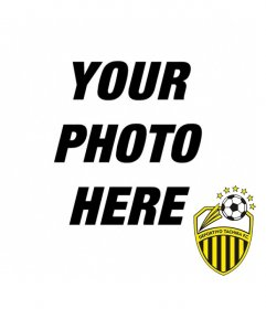 Photomontage with Deportivo Tachira FC shield to make a collage with your photos