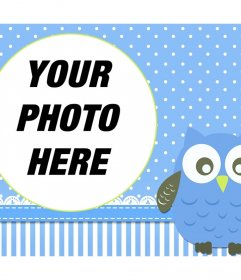 Photo frame with a little baby owl to decorate your pictures