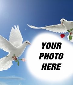 Photo effect of peace with two white doves flying