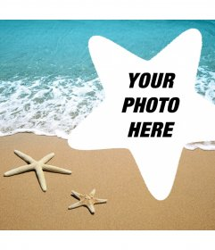 Photo effect to edit with your picture and add it inside a starfish
