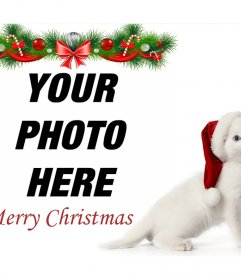 Christmas photo effect with a kitten to upload your photo