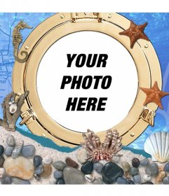 Photomontage under the sea where you can put your picture next to horses and sea stars