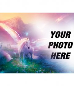 Fantasy photomontage to put your photo with white unicorns on a fantastic dream landscape