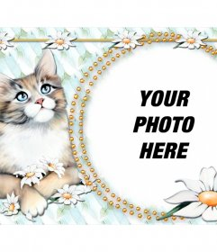 Photomontage to put your photo with a cute kitty