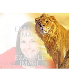 Photomontage to put your photo together with a lion