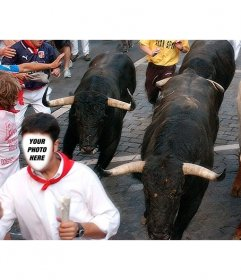Create a photomontage running with san fermin bulls following you in Pamplona and add text